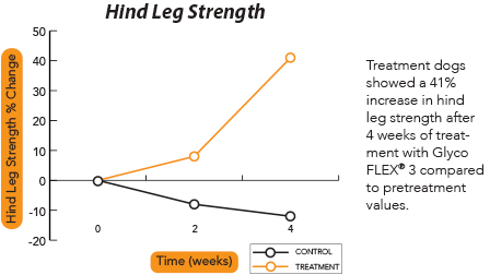 Graph demonstrating a 41% increase in hind leg strength for dogs treated with Glyco Flex 3 for 4 weeks.